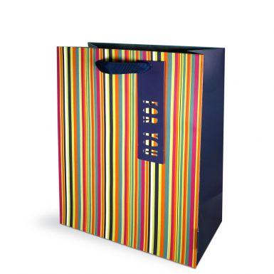 Gift Bag Medium Stripes