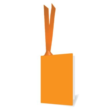 Tags - Apricot