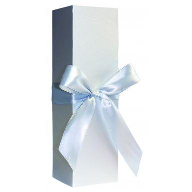 Metallic Silver Bottle Folding Box