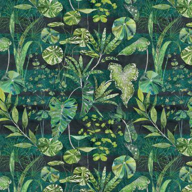 Gift Wrap Designers Guild Arjuna Green