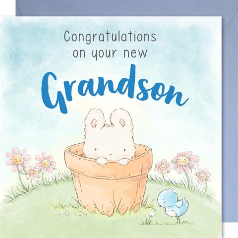 Congratulations on your new Grandson