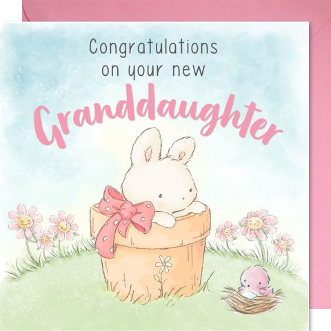 Congratulations on your new Grandaughter